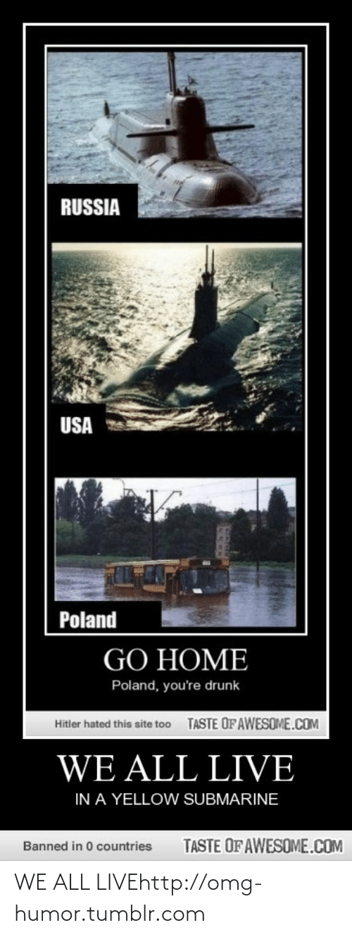 yellow submarine: RUSSIA  USA  Poland  GO HOME  Poland, you're drunk  TASTE OF AWESOME.COM  Hitler hated this site to0  WE ALL LIVE  IN A YELLOW SUBMARINE  TASTE OF AWESOME.COM  Banned in 0 countries WE ALL LIVEhttp://omg-humor.tumblr.com