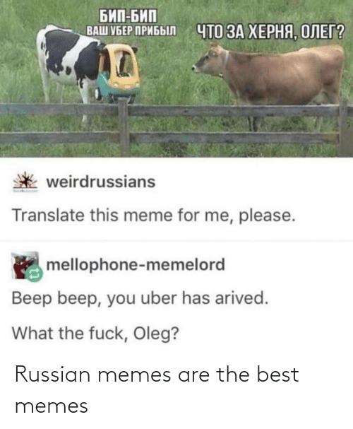 Russian: Russian memes are the best memes