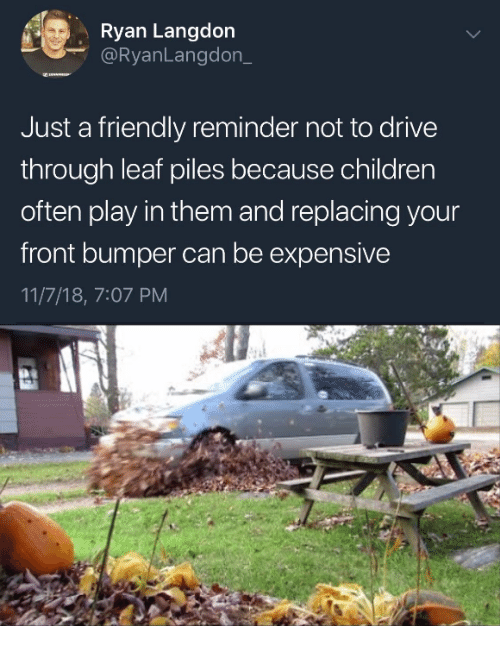 Children, Drive, and Leaf: Ryan Langdon  @RyanLangdon_  Just a friendly reminder not to drive  through leaf piles because children  often play in them and replacing your  front bumper can be expensive  11/7/18, 7:07 PM