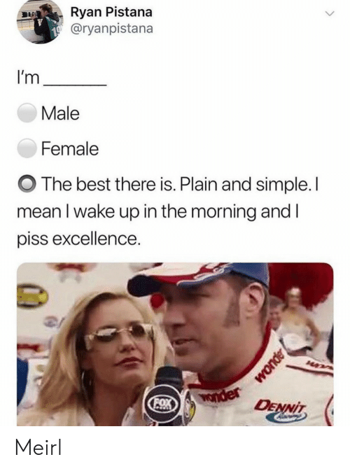 male: Ryan Pistana  @ryanpistana  I'm  Male  Female  The best there is. Plain and simple. I  mean I wake up in the morning and I  piss excellence.  Wonder  OX  DENNIT Meirl