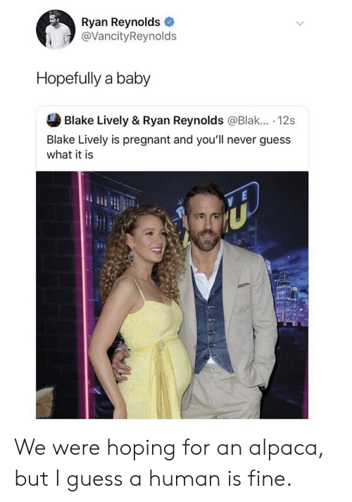 Pregnant, Ryan Reynolds, and Blake Lively: Ryan Reynolds  @VancityReynolds  Hopefully a baby  Blake Lively & Ryan Reynolds @Blak... . 12s  Blake Lively is pregnant and you'll never guess  what it is We were hoping for an alpaca, but I guess a human is fine.