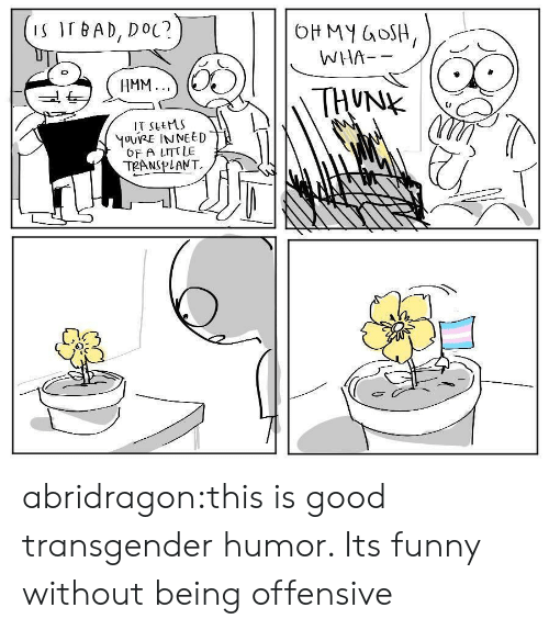 Bad, Funny, and Target: S IT BAD, DoC?  WHA--  HMM.  IT sLeMS  OF A LITT LE  02 abridragon:this is good transgender humor. Its funny without being offensive