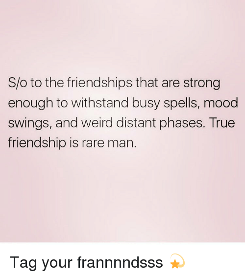 Mood, True, and Weird: S/o to the friendships that are strong  enough to withstand busy spells, mood  swings, and weird distant phases. True  friendship is rare man. Tag your frannnndsss 💫
