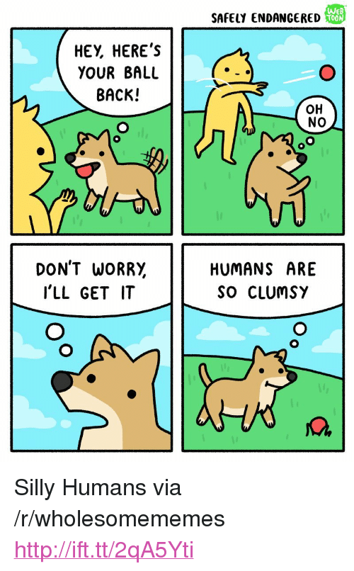 "Http, Back, and Via: SAFELY ENDANGERED  We  TOON  HEY, HERE's  YOUR BALL  BACK!  OH  NO  DON'T WORR,  I'LL GET IT  HUMANS ARE  So CLUmSY <p>Silly Humans via /r/wholesomememes <a href=""http://ift.tt/2qA5Yti"">http://ift.tt/2qA5Yti</a></p>"