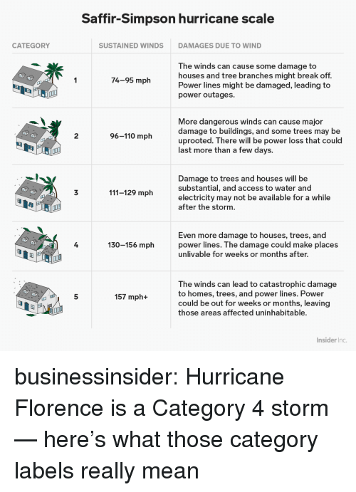 Andrew Bogut, Target, and Tumblr: Saffir-Simpson hurricane scale  CATEGORY  SUSTAINED WINDS  DAMAGES DUE TO WIND  The winds can cause some damage to  houses and tree branches might break off.  Power lines might be damaged, leading to  power outages.  74-95 mph  More dangerous winds can cause major  damage to buildings, and some trees may be  uprooted. There will be power loss that could  last more than a few days.  2  96-110 mph  Damage to trees and houses will be  substantial, and access to water and  electricity may not be available for a while  after the storm  3  111-129 mph  Even more damage to houses, trees, and  power lines. T he damage could make places  unlivable for weeks or months after.  4  130-156 mph  田  The winds can lead to catastrophic damage  to homes, trees, and power lines. Power  could be out for weeks or months, leaving  those areas affected uninhabitable.  5  157 mph+  田  Insider Inc businessinsider:  Hurricane Florence is a Category 4 storm — here's what those category labels really mean