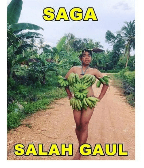 Gaul, Indonesian (Language), and Saga: SAGA  SALAH GAUL