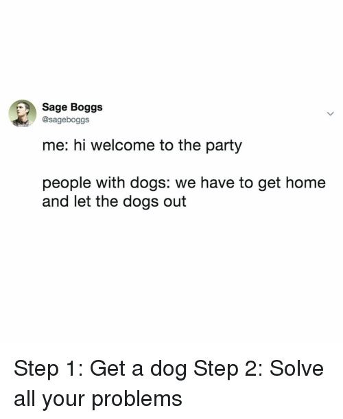 Sage: Sage Boggs  @sageboggs  me: hi welcome to the party  people with dogs: we have to get home  and let the dogs out Step 1: Get a dog Step 2: Solve all your problems