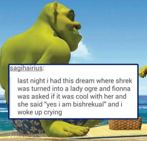 "Crying, Shrek, and Cool: sagihairius:  last night i had this dream where shrek  was turned into a lady ogre and fionna  was asked if it was cool with her and  she said ""yes i am bishrekual"" and i  woke up crying"