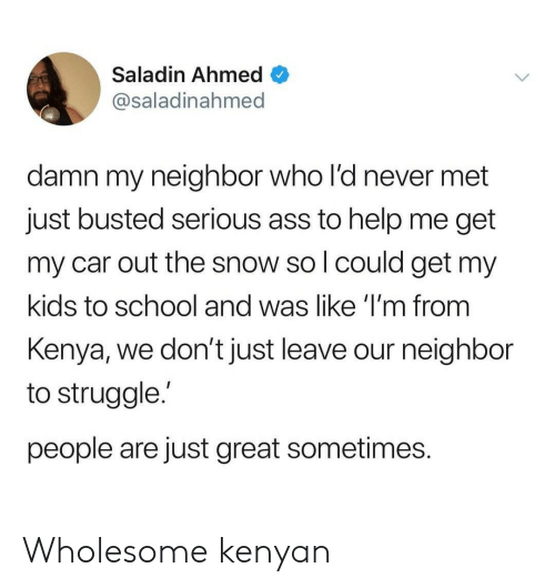 Ahmed: Saladin Ahmed  @saladinahmed  damn my neighbor who l'd never met  just busted serious ass to help me get  my car out the snow so l could get my  kids to school and was like 'I'm from  Kenya, we don't just leave our neighbor  to struggle.'  people are just great sometimes. Wholesome kenyan