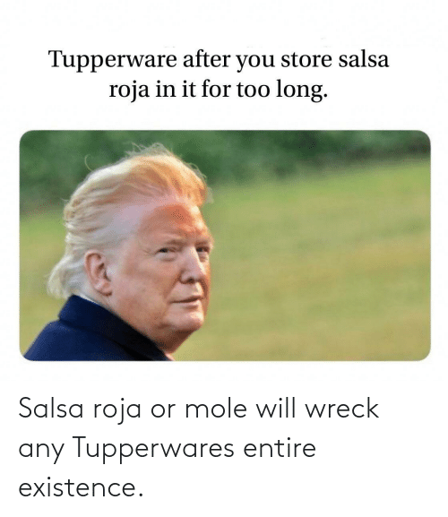 Mole, Salsa, and Roja: Salsa roja or mole will wreck any Tupperwares entire existence.