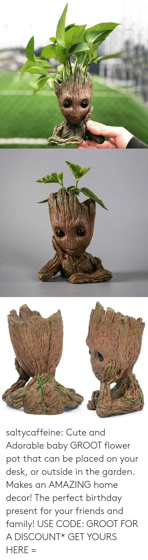Birthday, Cute, and Family: saltycaffeine:  Cute and Adorable baby GROOT flower pot that can be placed on your desk, or outside in the garden. Makes an AMAZING home decor! The perfect birthday present for your friends and family! USE CODE: GROOT FOR A DISCOUNT* GET YOURS HERE=