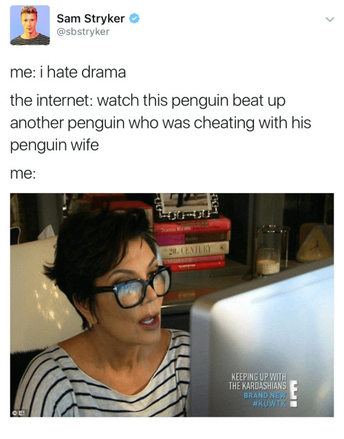 stryker: Sam Stryker  @sbstryker  me: i hate drama  the internet: watch this penguin beat up  another penguin who was cheating with his  penguin wife  me  KEEPING UP WITH  THE KARDASHIANS  BRAND  NEW/  CE!