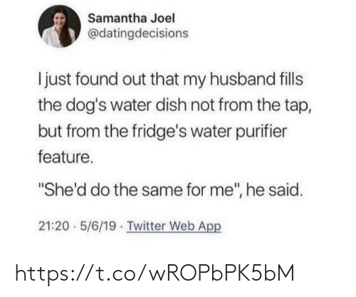 "Dogs, Memes, and Twitter: Samantha Joel  @datingdecisions  I just found out that my husband fills  the dog's water dish not from the tap,  but from the fridge's water purifier  feature.  ""She'd do the same for me"", he said.  21:20 5/6/19 Twitter Web App https://t.co/wROPbPK5bM"