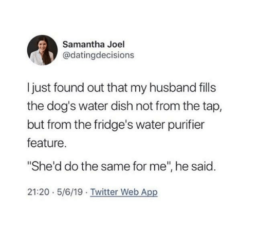 """samantha: Samantha Joel  @datingdecisions  Ijust found out that my husband fills  the dog's water dish not from the tap,  but from the fridge's water purifier  feature.  """"She'd do the same for me"""", he said.  21:20 5/6/19 Twitter Web App"""