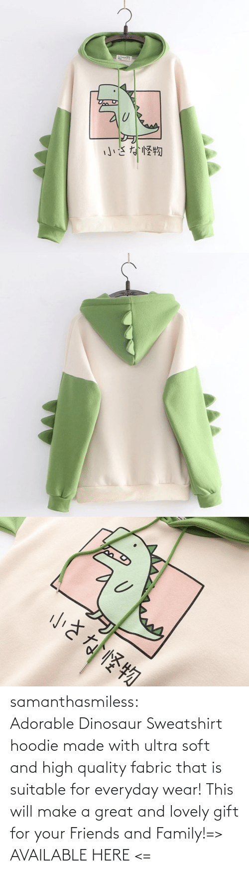 sweatshirt: samanthasmiless:  Adorable Dinosaur Sweatshirt hoodie made with ultra soft and high quality fabric that is suitable for everyday wear! This will make a great and lovely gift for your Friends and Family!=> AVAILABLE HERE <=