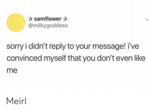 Sorry, MeIRL, and You: samflower  @milkygoddess  sorry i didn't reply to your message! i've  convinced myself that you don't even like  me Meirl