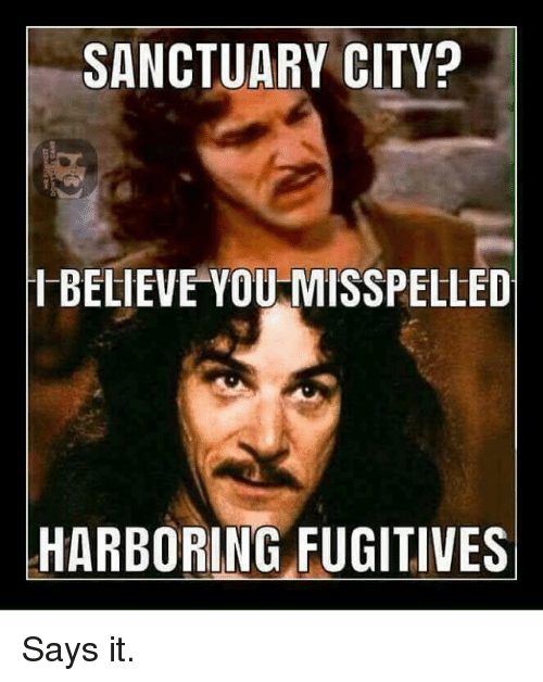 Memes, 🤖, and Sanctuary: SANCTUARY CITY?  IBELIEVE YOU MISSPELLED  HARBORING FUGITIVES Says it.