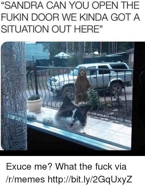 "Memes, Fuck, and Http: ""SANDRA CAN YOU OPEN THE  FUKIN DOOR WE KINDA GOT A  SITUATION OUT HERE""  60 Exuce me? What the fuck via /r/memes http://bit.ly/2GqUxyZ"