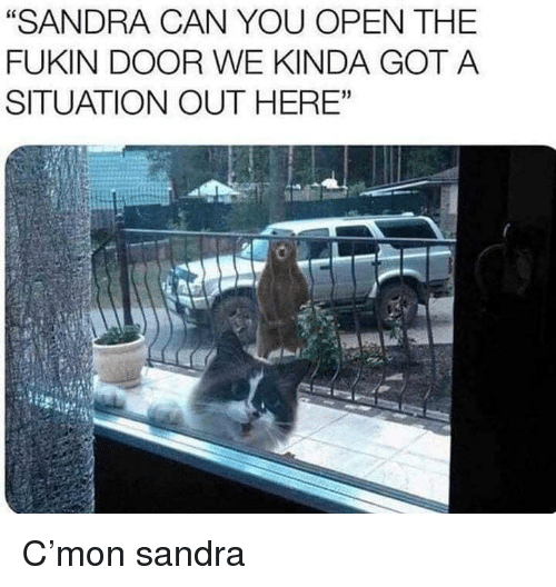 "Got, Can, and Open: ""SANDRA CAN YOU OPEN THE  FUKIN DOOR WE KINDA GOT A  SITUATION OUT HERE"" C'mon sandra"