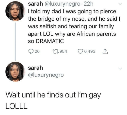 Pierce: sarah @luxurynegro 22h  I told my dad I was going to pierce  the bridge of my nose, and he said I  was selfish and tearing our family  apart LOL why are African parents  so DRAMATIC  26 t954 6,493  sarah  @luxurynegro  Wait until he finds out I'm gay  LOLLL