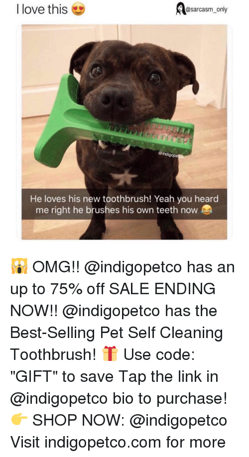 """Funny, Love, and Memes: @sarcasm_only  I love this  ind  gope  He loves his new toothbrush! Yeah you heard  me right he brushes his own teeth now 🙀 OMG!! @indigopetco has an up to 75% off SALE ENDING NOW!! @indigopetco has the Best-Selling Pet Self Cleaning Toothbrush! 🎁 Use code: """"GIFT"""" to save Tap the link in @indigopetco bio to purchase! 👉 SHOP NOW: @indigopetco Visit indigopetco.com for more"""
