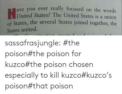 Tagged: sassafrasjungle:  #the poison#the poison for kuzco#the poison chosen especially to kill kuzco#kuzco's poison#that poison