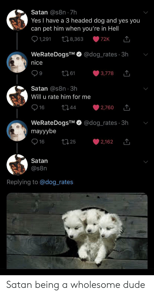 Dude, Wholesome, and Hell: Satan @s8n 7h  Yes I have a 3 headed dog and yes you  can pet him when you're in Hell  1,291  t8,363  72K  @dog_rates 3h  WeRateDogsTM  nice  t161  3,778  9  Satan @s8n 3h  Will u rate him for me  16  t44  2,760  @dog_rates 3h  WeRateDogsTM  mayyybe  t25  16  2,162  Satan  @s8n  Replying to @dog_rates Satan being a wholesome dude
