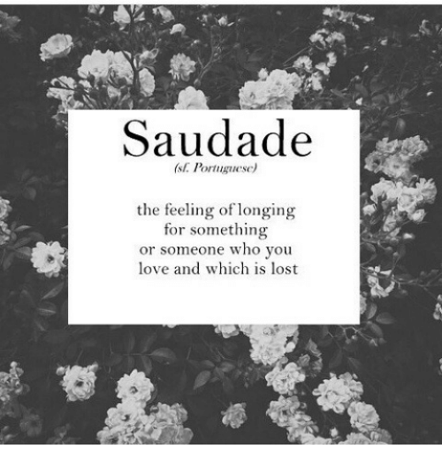 longing: Saudade  (st. Portuguese)  the feeling of longing  for something  or someone who you  love and which is lost