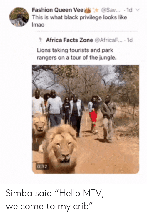 "Africa, Facts, and Fashion: @Sav. 1d  Fashion Queen Vee  This is what black privilege looks like  Imao  Africa Facts Zone @AfricaF.. 1d  Lions taking tourists and park  rangers on a tour of the jungle  0:32 Simba said ""Hello MTV, welcome to my crib"""