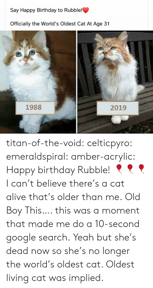 That Made: Say Happy Birthday to Rubble!  Officially the World's Oldest Cat At Age 31  1988  2019 titan-of-the-void: celticpyro:   emeraldspiral:  amber-acrylic: Happy birthday Rubble! 🎈🎈🎈 I can't believe there's a cat alive that's older than me.  Old Boy   This…. this was a moment that made me do a 10-second google search. Yeah but she's dead now so she's no longer the world's oldest cat. Oldest living cat was implied.