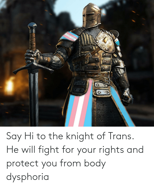 Will Fight: Say Hi to the knight of Trans. He will fight for your rights and protect you from body dysphoria