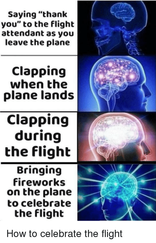 "Thank You, Fireworks, and Flight: Saying ""thank  you"" to the flight  attendant as you  leave the plane  Clapping  when the  plane lands  Clapping  during  the flighb  Bringing  fireworks  on the plane  to celebrate  the flight How to celebrate the flight"