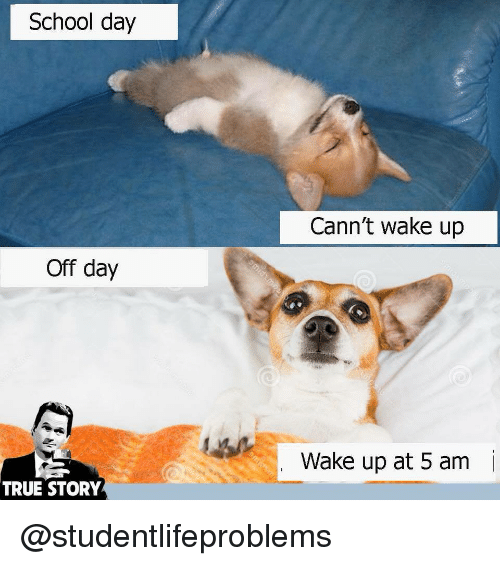 5 Am, School, and True: School day  Cann't wake up  Off day  Wake up at 5 am  i  TRUE STORY @studentlifeproblems
