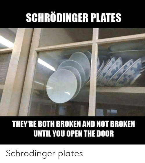 Open, You, and Door: SCHRODINGER PLATES  THEY'RE BOTH BROKEN AND NOT BROKEN  UNTIL YOU OPEN THE DOOR Schrodinger plates