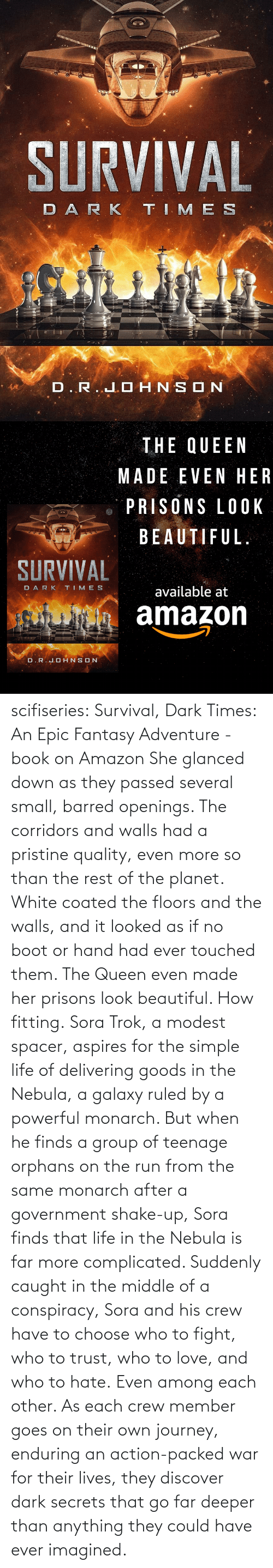beautiful: scifiseries: Survival, Dark Times: An Epic Fantasy Adventure - book on Amazon  She glanced down as they  passed several small, barred openings. The corridors and walls had a  pristine quality, even more so than the rest of the planet. White coated  the floors and the walls, and it looked as if no boot or hand had ever  touched them.  The Queen even made her prisons look beautiful.  How fitting. Sora  Trok, a modest spacer, aspires for the simple life of delivering goods  in the Nebula, a galaxy ruled by a powerful monarch. But when he finds a  group of teenage orphans on the run from the same monarch after a  government shake-up, Sora finds that life in the Nebula is far more complicated.  Suddenly  caught in the middle of a conspiracy, Sora and his crew have to choose  who to fight, who to trust, who to love, and who to hate. Even among each other.  As  each crew member goes on their own journey, enduring an action-packed  war for their lives, they discover dark secrets that go far deeper than  anything they could have ever imagined.