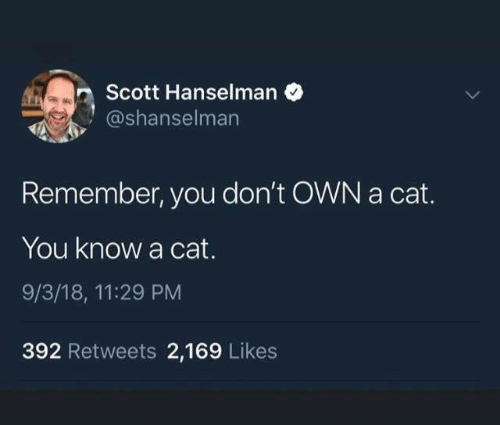 Cat, Own, and Remember: Scott Hanselman  TE  @shanselman  Remember, you don't OWN a cat.  You know a cat.  9/3/18, 11:29 PM  392 Retweets 2,169 Likes