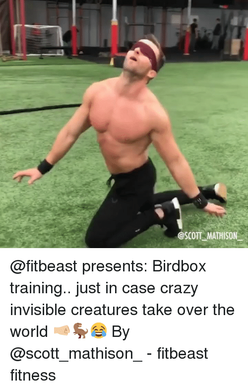 Crazy, Memes, and World: @SCOTT MATHISON @fitbeast presents: Birdbox training.. just in case crazy invisible creatures take over the world 🤜🏼🦖😂 By @scott_mathison_ - fitbeast fitness