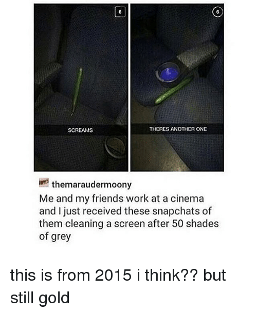 Another One, Friends, and Memes: SCREAMS  THERES ANOTHER ONE  themaraudermoony  Me and my friends work at a cinema  and I just received these snapchats of  them cleaning a screen after 50 shades  of grey this is from 2015 i think?? but still gold