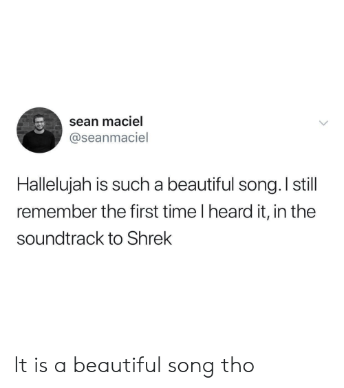 Soundtrack: sean maciel  @seanmaciel  Halleluiah is such a beautiful sona, I still  remember the first time I heard it, in the  soundtrack to Shrek It is a beautiful song tho