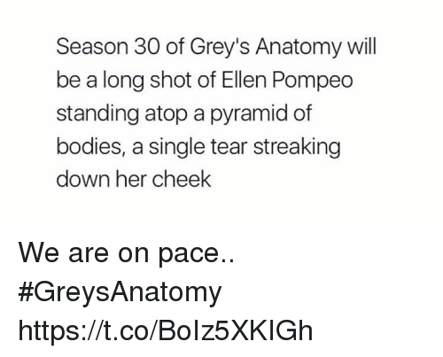 Bodies , Memes, and Grey's Anatomy: Season 30 of Grey's Anatomy will  be a long shot of Ellen Pompeo  standing atop a pyramid of  bodies, a single tear streaking  down her cheek We are on pace.. #GreysAnatomy https://t.co/BoIz5XKIGh