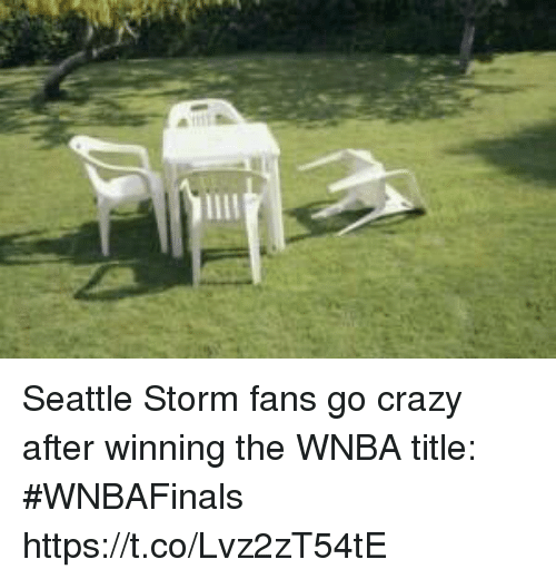 Crazy, Sports, and WNBA (Womens National Basketball Association): Seattle Storm fans go crazy after winning the WNBA title: #WNBAFinals https://t.co/Lvz2zT54tE