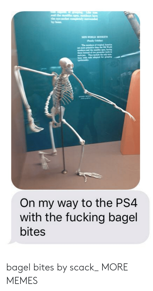new world: sed the ma  the y  one  NEW WORLD MONKEYS  dily  The mt f l A  hnhe Od Wd  h Thr heby  On my way to the PS4  with the fucking bagel  bites bagel bites by scack_ MORE MEMES