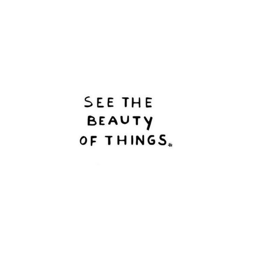 Beauty,  See, and  Things: SEE THE  BEAUTY  OF THINGS