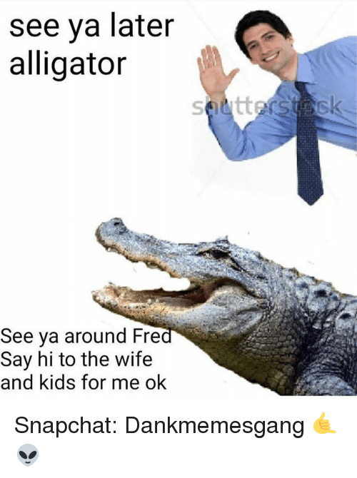 Memes, Snapchat, and Alligator: see ya later  alligator  See ya around Fre  Say hi to the wife  and kids for me ok Snapchat: Dankmemesgang 🤙👽