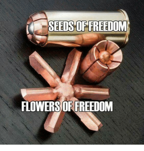 Memes, Flowers, and Freedom: SEEDS OF FREEDOM  FLOWERS OF FREEDOM