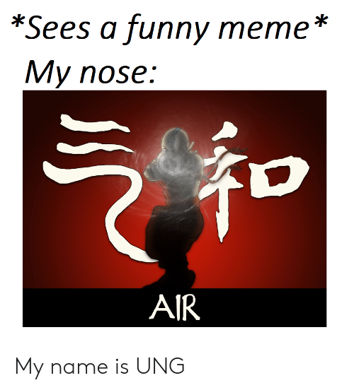 funny meme: *Sees a funny meme *  My nose:  AIR My name is UNG