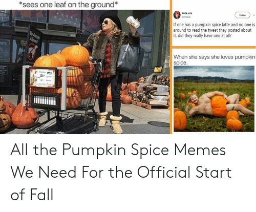 Pumpkin Meme: *sees one leaf on the ground*  THEA LUX  Follow  @thealux  If one has a pumpkin spice latte and no one is  around to read the tweet they posted about  it, did they really have one at all?  When she says she loves pumpkin  Spice. All the Pumpkin Spice Memes We Need For the Official Start of Fall