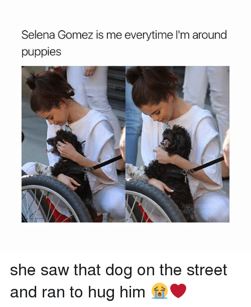 Sawing: Selena Gomez is me everytime I'm around  puppies she saw that dog on the street and ran to hug him 😭❤️