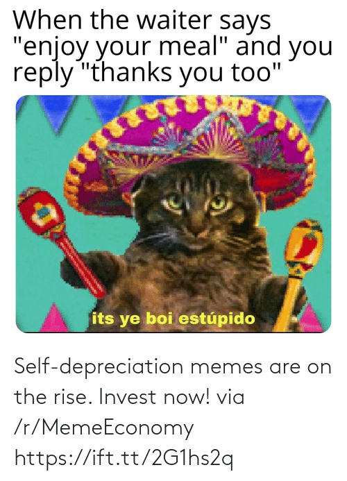 now: Self-depreciation memes are on the rise. Invest now! via /r/MemeEconomy https://ift.tt/2G1hs2q