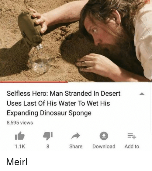 Dinosaur, Water, and MeIRL: Selfless Hero: Man Stranded In Desert  Uses Last Of His Water To Wet His  Expanding Dinosaur Sponge  8,595 views  1.1K  Share Download Add to Meirl